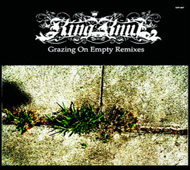 King Knut  Grazing On Empty Remixes